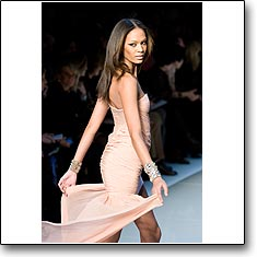 Click here to view beautiful Joan Smalls internetrends portfolio